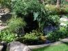 coi-pond-design