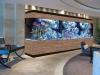 commercial-aquarium-design