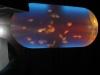 jelly-fish-tank