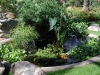 coi-pond-design