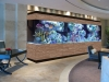 commercial-aquarium-design