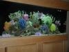 fake-coral-reefs