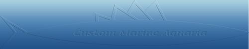 Arizona Fish Guy - Custom Marine Aquaria